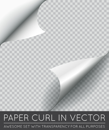 Vector Paper Page Curl with Shadow Isolated. Illustration