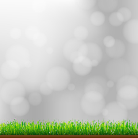 morning dew: Natural Green Grass Background with Focus and Bokeh Illustration