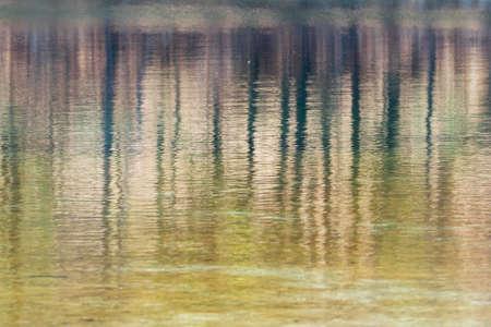 reflection: reflection