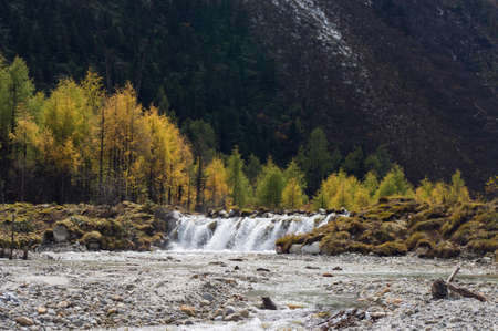 streamlet: lakelet and tree in Sichan, China. Stock Photo