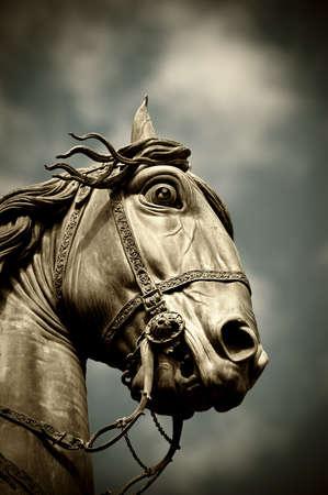 roma antigua: Una estatua de cabeza de caballo aislada sobre un cielo azul