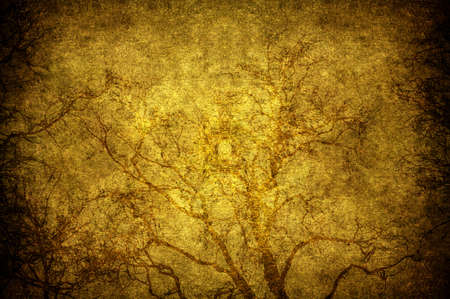 A grunge tree textured in the sky photo