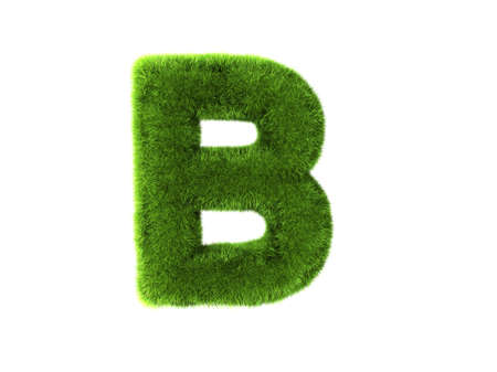 b: A grass b isolated on a white background