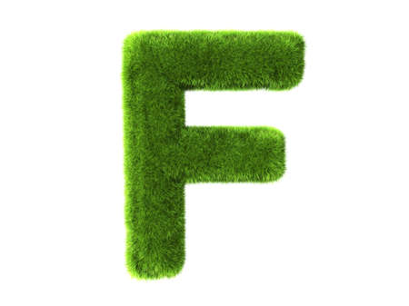 A grass f isolated on a white background photo