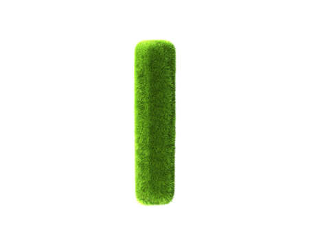 A grass i isolated on a white background photo