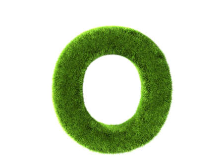 A grass o isolated on a white background Stock Photo - 8646279