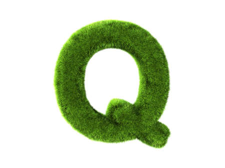 A grass q isolated on a white background photo