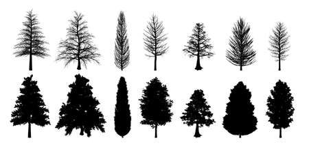 Collection of silhouette trees Illustration