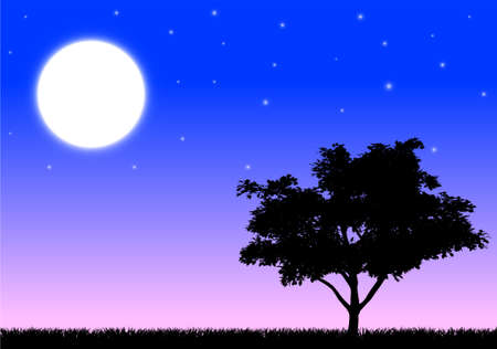 Silhouette of a tree and grass in the night with moon and stars  Vector