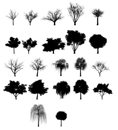 Collection of silhouette trees Stock Vector - 11136368