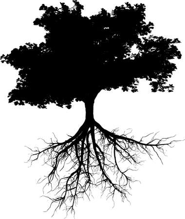 Silhouettes of tree with its roots  Ilustração