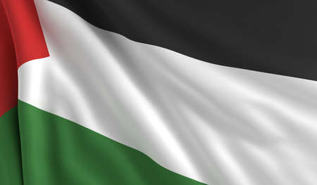 flapping: A flag of Palestine in the wind
