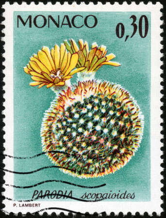 philatelic: CIRCA 1974  A stamp printed in Monaco showing a Parodia Scopaioides, circa 1974