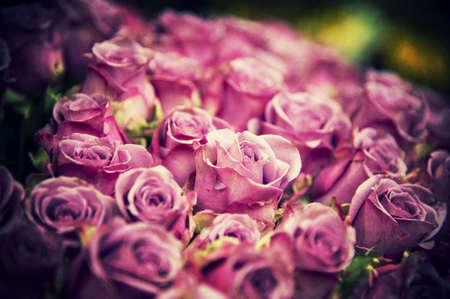 Beautiful grunge roses in a garden shop photo