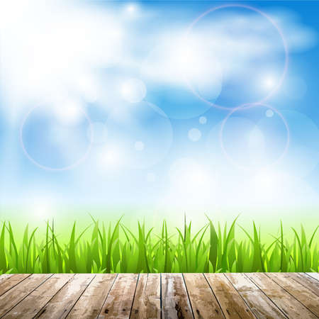 Background with wood, grass and sun in a blue sky Vector