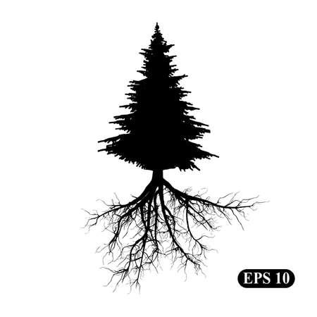 Silhouette d'un arbre avec des racines Vecteurs