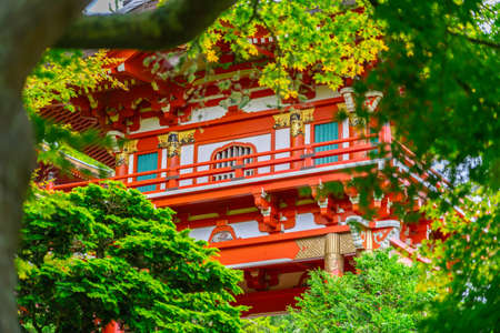 Close up of Pagoda in Japanese Tea Garden at Golden Gate Park, San Francisco, California