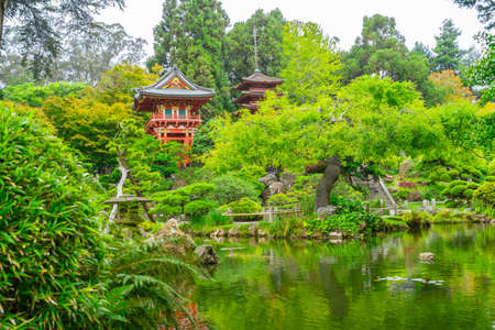 Beautiful Japanese Tea Garden in Golden Gate Park