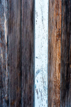 Dark and white wooden texture.