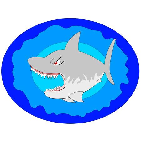 Shark  Illustration Stock Vector - 7885075