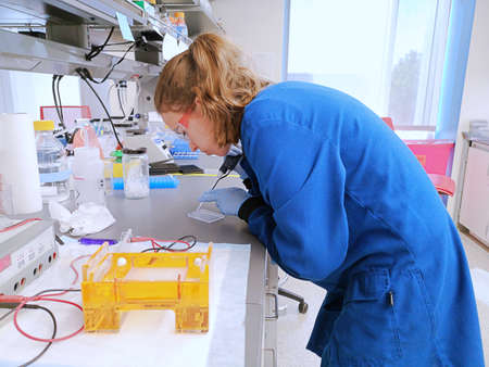 Young woman researcher loading the pipette with a DNA sample to load an agarose gel. Real situation, real laboratory.