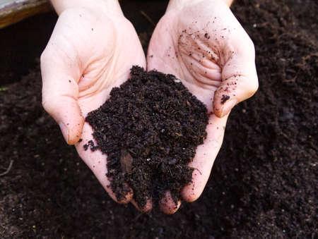 Soil in male hands. Fertility concept.