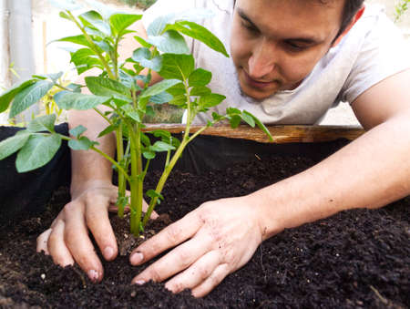 Young caucasian man gardening. Agriculture and gardening concept.