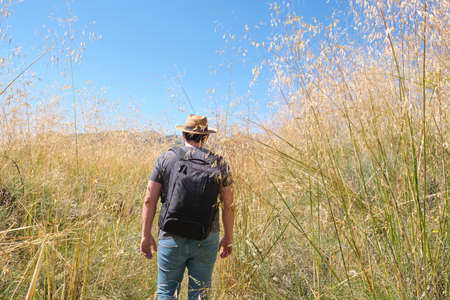Young caucasian man with a straw hat hiking through a high plants field. Mushroom rocks path (Ruta de las Piedras Seta), Madrid, Spain.