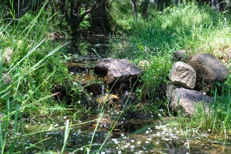 Creek. Mushroom rocks path (Ruta de las Piedras Seta), Madrid, Spain.