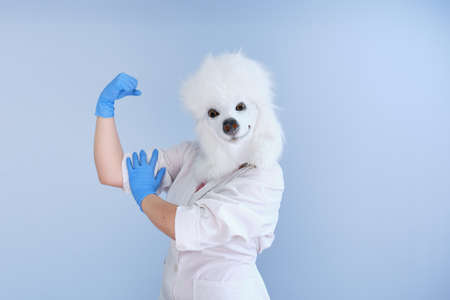 Young woman in a latex dog head mask and white coat making strong sign on a blue background. Doctor medical veterinary concepts. Stockfoto