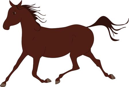 illustration horse arabian bay trotting