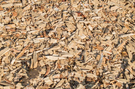 Wooden shavings chips, natural material background pattern.