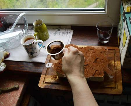 mascarpone: Making tiramisu, sprinkle cocoa powder female hand.