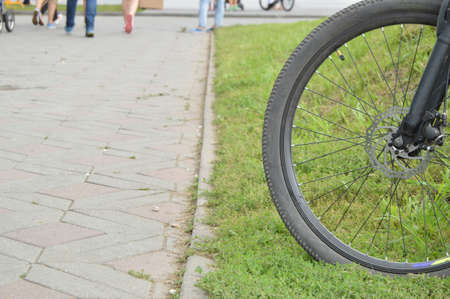 Bicycle wheel, park outside on a summer day.