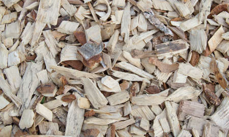 Wooden shavings chips, natural material background pattern Stockfoto