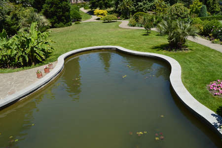 Beautiful oval pond with muddy water and plants in the Park with mowed lawn. Reklamní fotografie