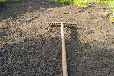 Garden rakes lying on the ploughed black soil for planting - the concept of gardening and farming, spring work in the garden. Zdjęcie Seryjne