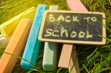 Mini blackboard written Back to school and colorful chalk on a green grass background.