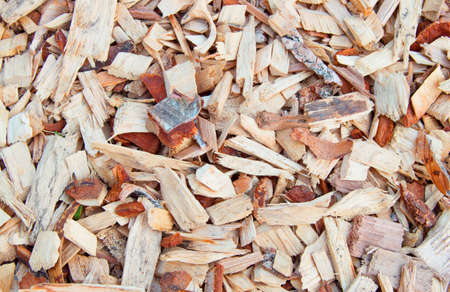 Wood shavings, shavings, chips, natural material texture background. Stockfoto