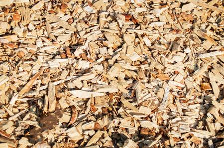 Wood shavings, shavings, chips, natural material texture background. Reklamní fotografie