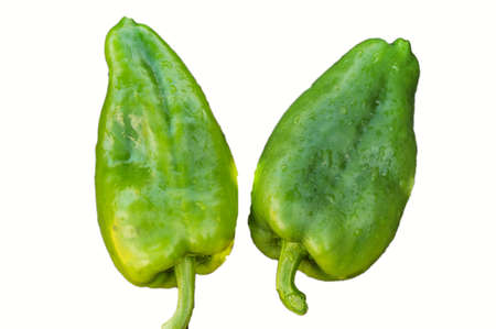 Two green raw peppers bells isolated on white background by clipping, water drops on organic fresh vegetables, vegetarian diet and proper nutrition concept, top view. Banco de Imagens