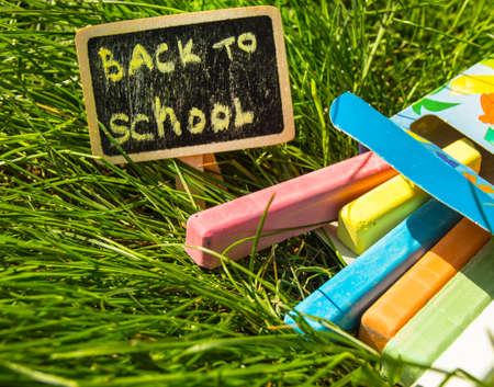 Back to school, the inscription on the mini-Board, the layout of the Board and chalk on the green grass, the concept of preparation for school. Copy space.