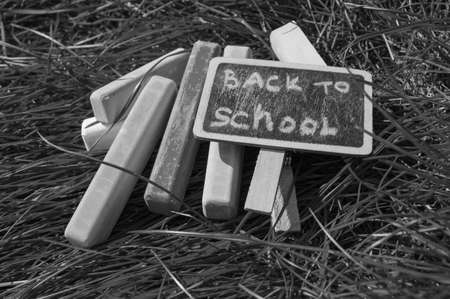 Monochrome, black and white, Return to school, the inscription on the mini-Board, the layout of the Board and chalk on the green grass, the concept of preparing for school. Copy space