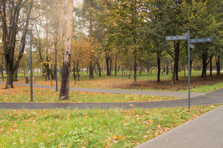 Path through the autumn forest in the city Park, fallen yellow and orange leaves, pointer in Russian. Фото со стока