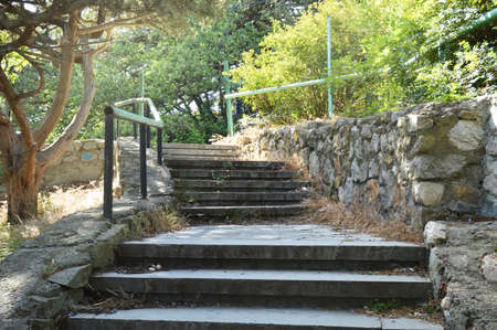 A beautiful staircase with stone steps and a metal lattice among the thickets of trees in a shady Park, the sun shines through the lush foliage.