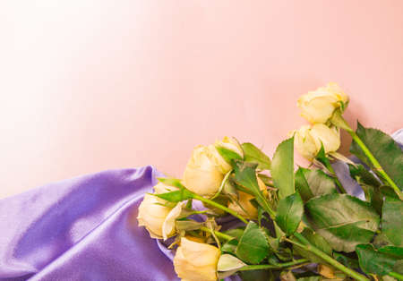 Bouquet of DELICATE YELLOW ROSES ON a soft lilac silk on a pink background, flat lay, top view, ready layout, romance and love.