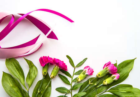 Spring composition and layout with red flowers, pink ribbons, copy of space, flat lay on a white isolated background. Valentine's day or wedding concept and for your greeting card design.