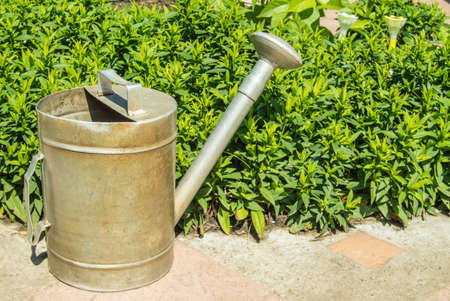 An old vintage metal watering can in the garden, outdoors, with a flower garden in the background. Sunny summer day. Фото со стока
