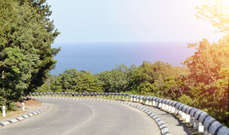 Highway leading to the sea coast, along the trees, bright sunlight Stok Fotoğraf