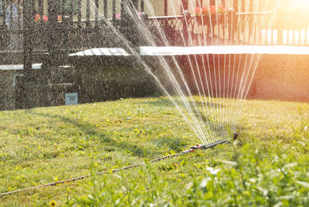 A lawn sprinkler sprays water on the green grass on the lawn. Modern irrigation system on a sunny summer day